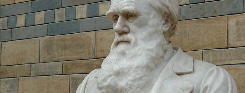 Darwin Day Pixabay